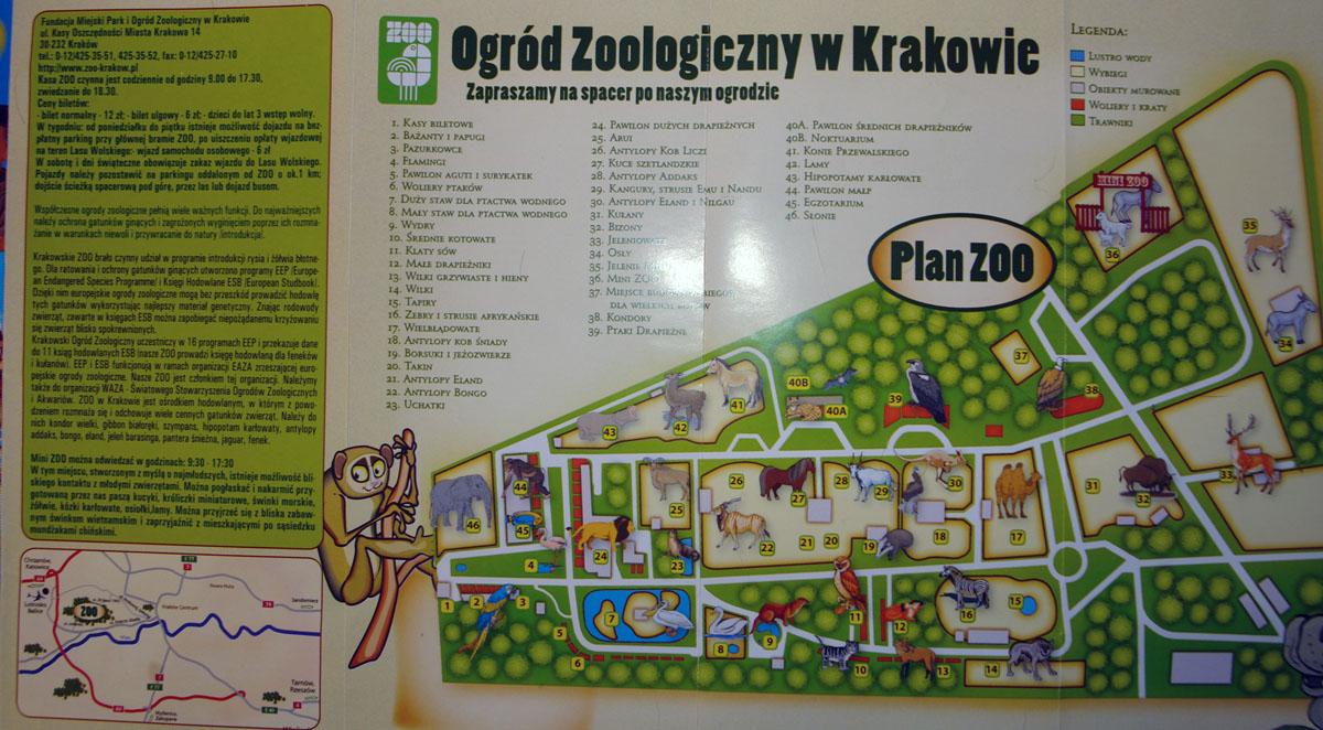 Zobacz Temat Zoo Krakow