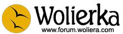 Woliera Forum o ptakach